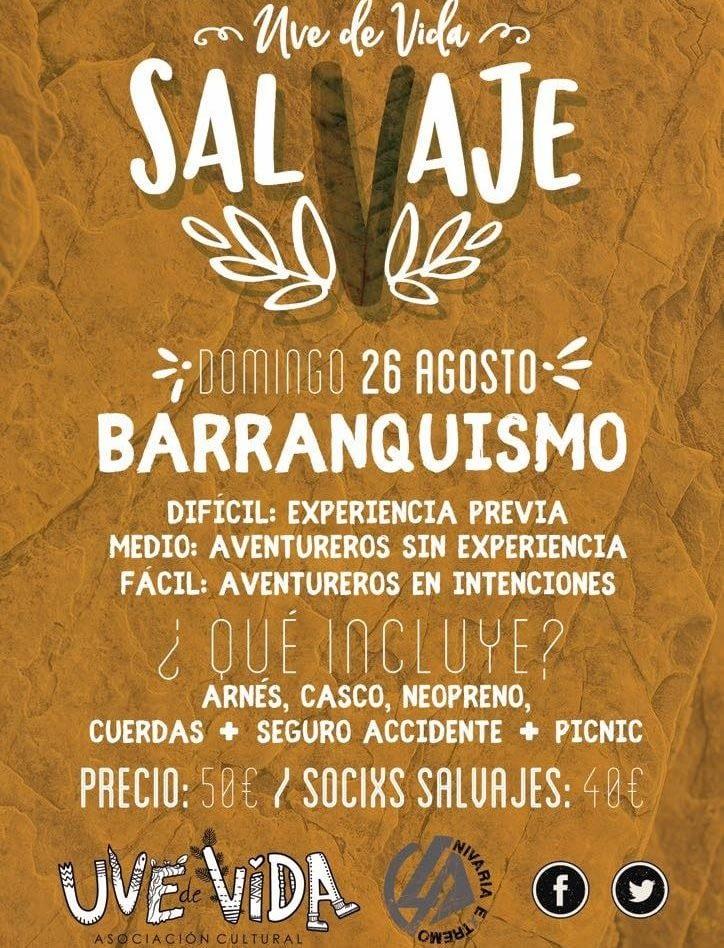SalVaje Barranquismo Los Silos