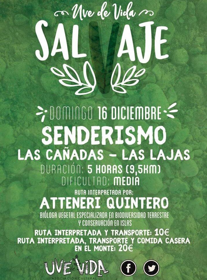SalVaje  Las Cañadas-Las Lajas